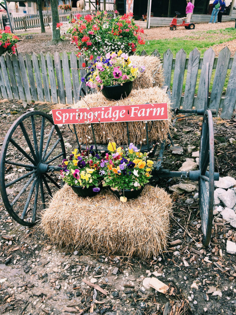 Springridge Farm Burlington ontario Canada