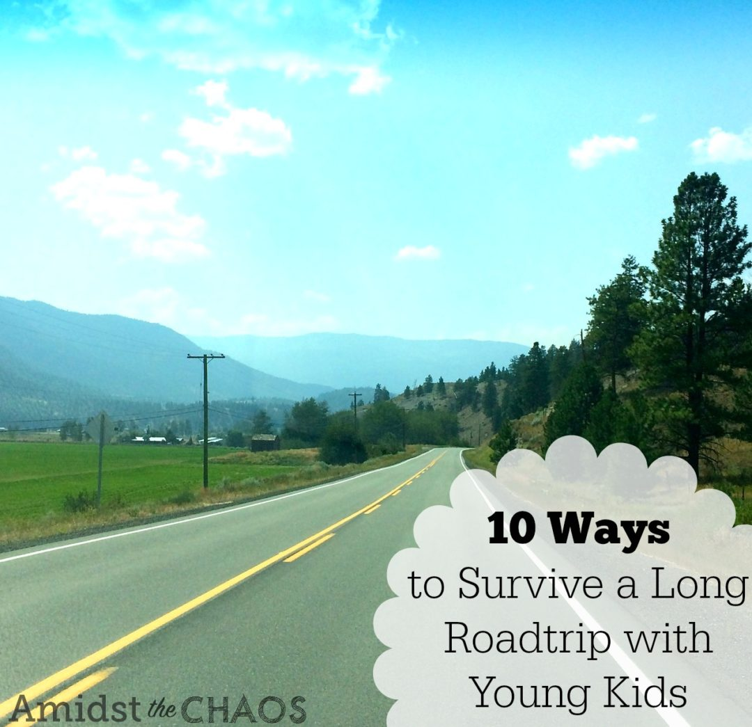 10 Ways to Survive a Long Roadtrip with Young Kids