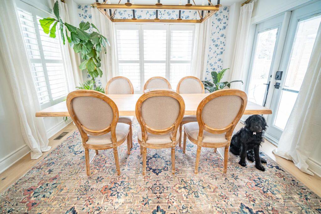 dog-sitting-on-mohawk-home-rug